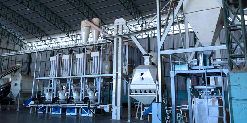 Thailand 6t/h Wood Pellet Production Line
