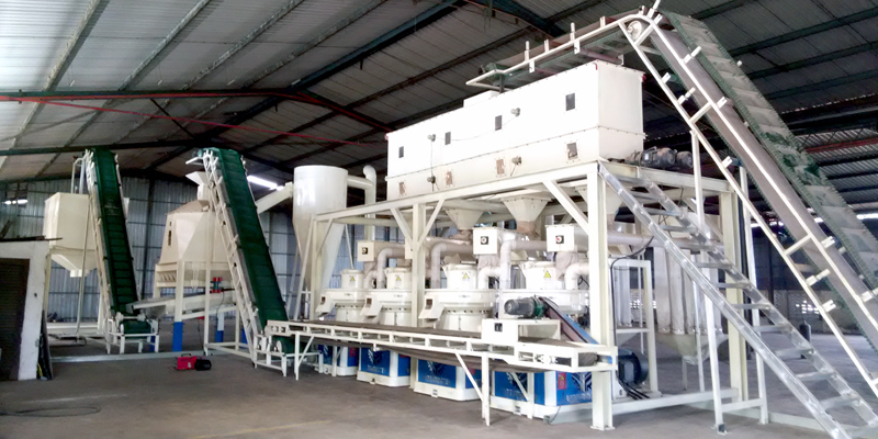 Malaysia 6t/h Wood Pellet Production Line