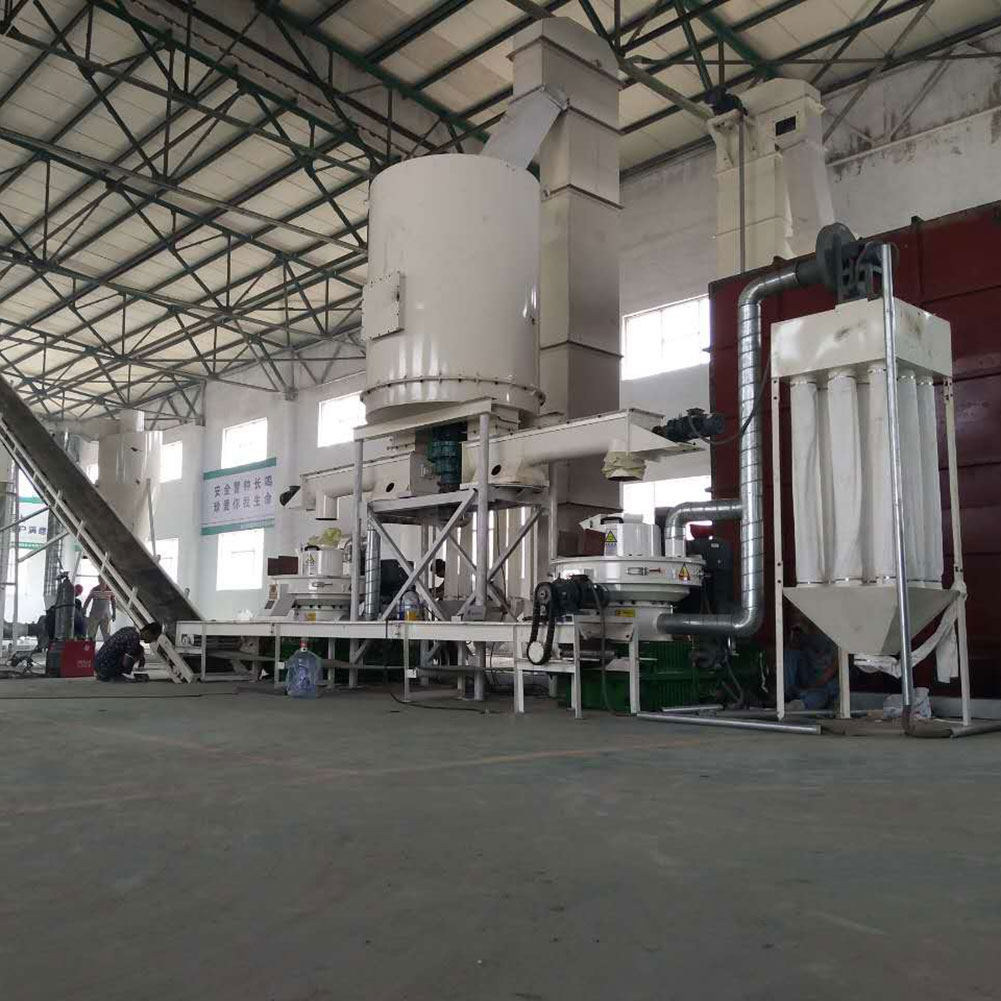 New Design Hot Sale Automatic Lubrication Biomass Wood Pellet Machine